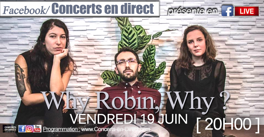 WHY ROBIN WHY 19/6/20